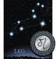 leo zodiac sign Lion zodiac poster vector image vector image