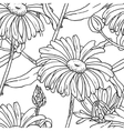 Primula flowers with buds and leaves vector image vector image