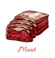 raw fresh butchery meat slice isolated icon vector image vector image