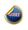 American sticker vector image