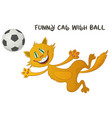 funny cat with soccer ball vector image
