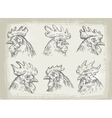 collection of hand drawn chicken vector image vector image