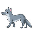 cute wolf on a white background vector image vector image