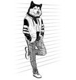 Fashion man with the head of dog vector image vector image
