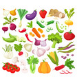 raw vegetables with sliced isolated realistic vector image vector image