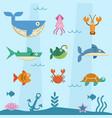 sea life flat retro character vector image