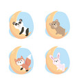 set cute wild animals in moon vector image vector image