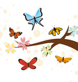 butterflies card vector image