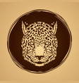 cheetah face tiger head panthera front view face vector image