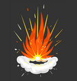 explosion fire and smokeexplosive details icon vector image