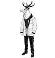 Portrait of a Hipster deer vector image