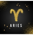 Zodiac Sign Gold Tinsel scattered on black vector image