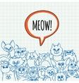 doodle cat background vector image