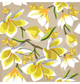 Floral seamless pattern with frangipani vector image