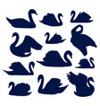 swan silhouette set vector image