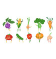 cute and funny vegetable character set flat vector image