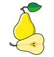Pear with leaf isolated on white background vector image vector image