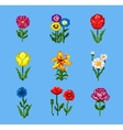 Pixel Flower Icons Set vector image vector image