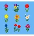 Pixel Flower Icons Set vector image