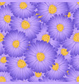 purple aster daisy flower seamless background vector image vector image
