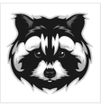 Raccoons head logo for sport club or team vector image vector image