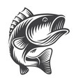 vintage bass fish concept vector image vector image