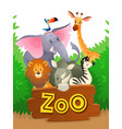 zoo animals african safari wildlife cute groups vector image vector image