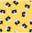 black white cat on yellow background vector image vector image
