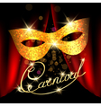 Carnival emblem with golden mask vector image vector image