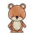 cute bear woodland icon vector image