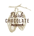 dark chocolate logo template vector image vector image