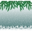 Fir tree branches and snowflakes vector image vector image