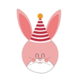 Pink and cute baby rabbit with hat party vector image vector image