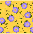 purple aster daisy on yellow background vector image vector image