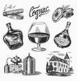 cognac and glass bottles with labels cigar vector image vector image