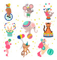 cute funny animals performing in circus show set vector image vector image