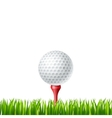Golf ball on a tee vector image vector image