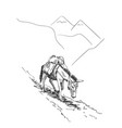 mule walking in mountains with load on his back vector image