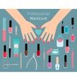 Professional Manicure accessorie vector image