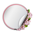 round frame with sakura blossom vector image vector image