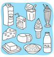 Diary and milk products vector image