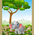 cartoon elephant walking in the jungle vector image