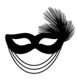 mask with feathers vector image vector image