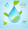 nature concept transparent purity drop water and vector image