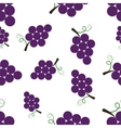Pattern Silhouette Grapes vector image vector image