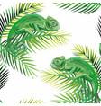 seamless pattern chameleon on banana leaves vector image
