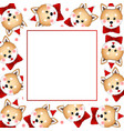 shiba inu santa claus dog with red ribbon on vector image vector image