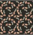chrysanthemum flowers drawing bloom in brown vector image