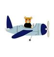 cute bear pilot flying on retro plane in sky vector image