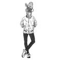 fashion animal anthropomorphic design furry art vector image vector image